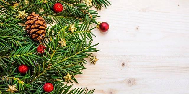 Cuál es el significado del árbol de Navidad.