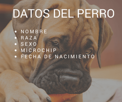 datos del perro
