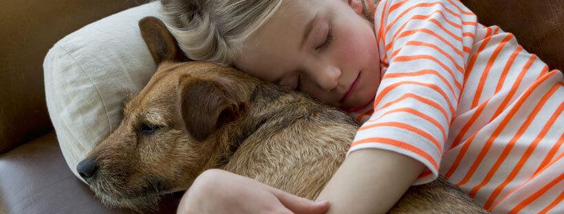 adopta-un-perro