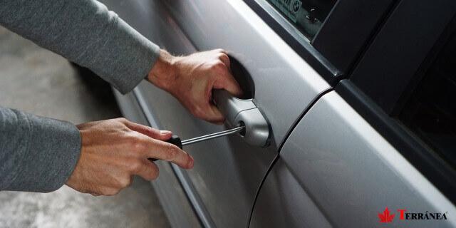 Te explicamos qué hacer si te roban el carnet de conducir