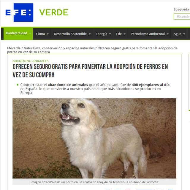 Terránea y Adopta un perro en EFE