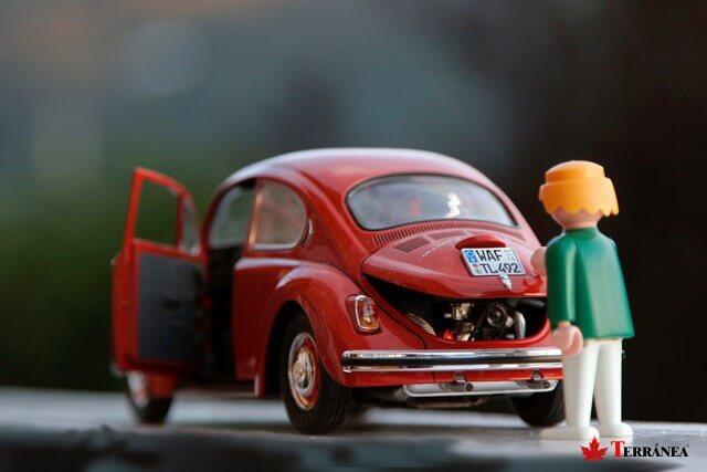 escarabajo-vehiculo de segunda mano