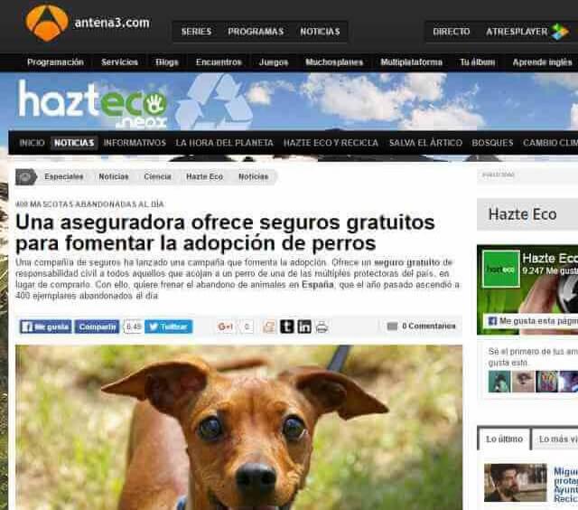 adopta un perro Terránea en Antena 3