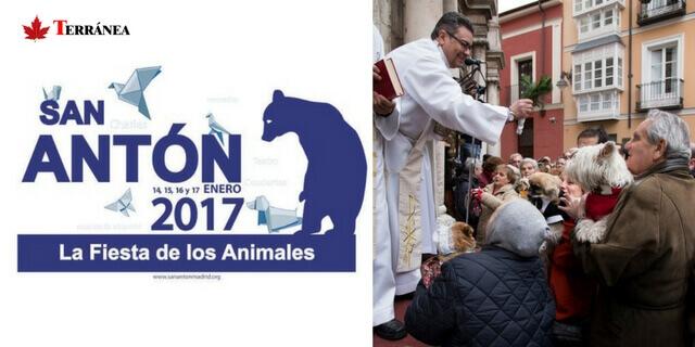 Fiestas de San Antón Madrid