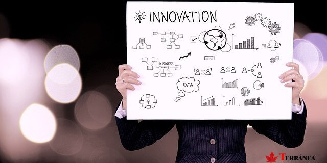 2017 innovación seguros