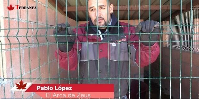 Protectora de animales Madrid, el arca de zeus