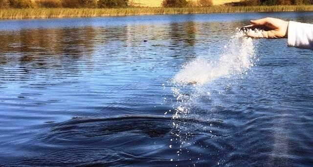 esparcir cenizas en el mar o lago