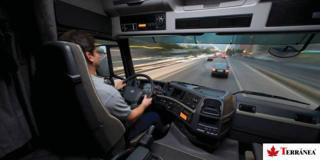 transportista autónomo conduciendo camión