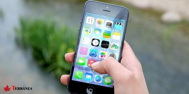 Más de 500.000 smartphones sufrieron algún percance en España en 2016.