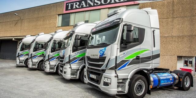 flota de camiones de empresa de transportes