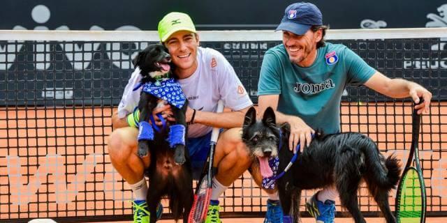 A todos los perros recogepelotas les esperaba en Sao Paulo una familia de adopción .