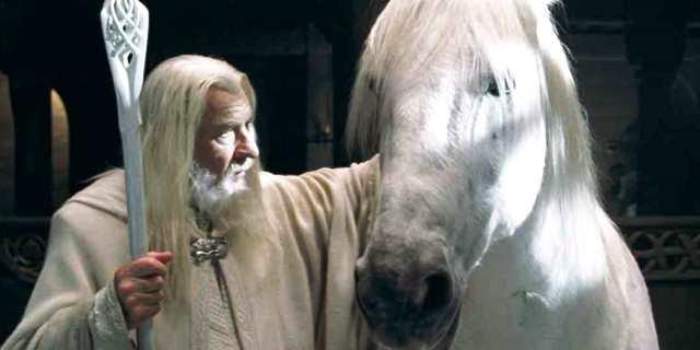 Sombragris el caballo de Gandalf
