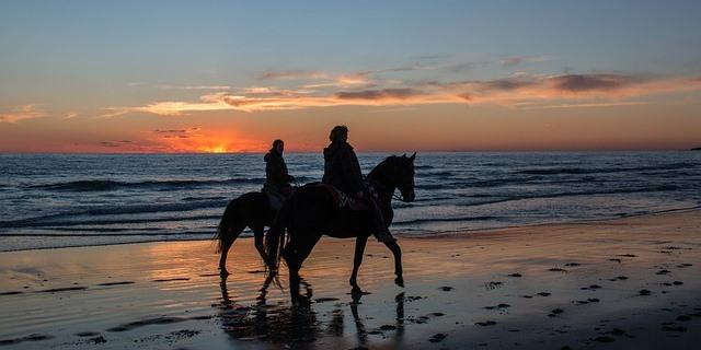 Las playas andaluzas, un destino muy atractivo para pasear en caballo.