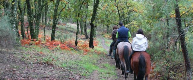 Extremadura destaca como una de las comunidades más factibles para recorrer a caballo (Foto: Centro Ecuestre Ecupasil).