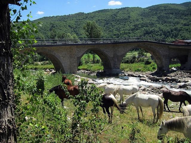 Los paisajes y la naturaleza no faltarán en los caminos a caballo en España.