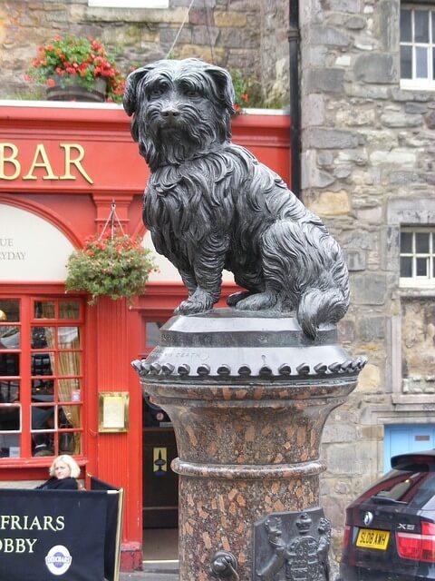 Una figura de un perro, captada en Reino Unido.