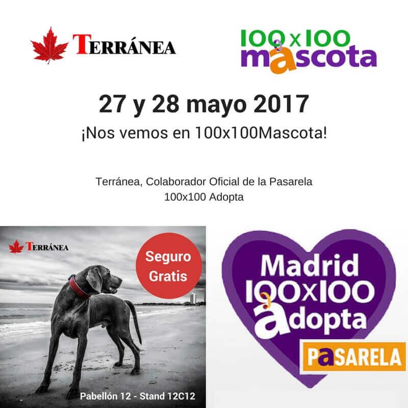 patrocinador 100x100mascota