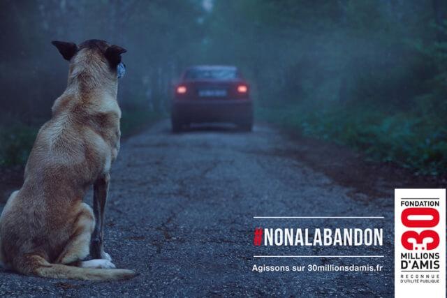 #Noalabandon, la iniciativa de la fundación 30 Millons d'Amis.