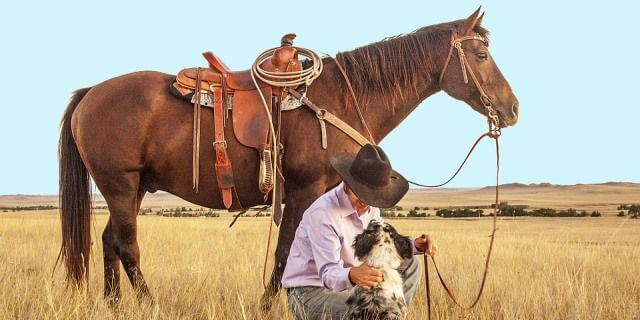 Las monturas de caballos de los vaqueros son las sillas occidentales.