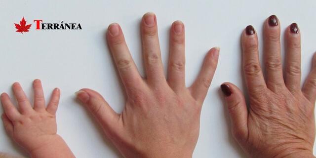 manos de adulto, niño y anciano que muestran la evolución de los seguros de decesos
