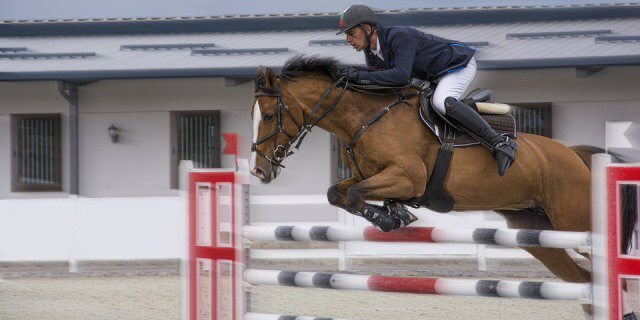 Jinete saltando con su caballo