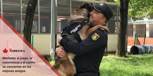 Perros policía abrazando a su guía