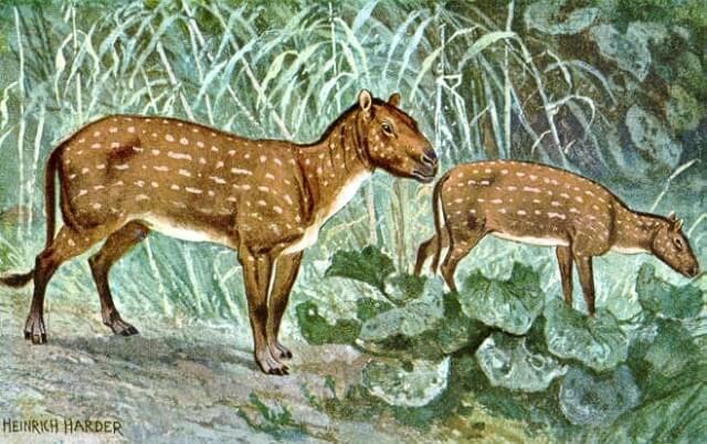 Eohippus representado en una pintura de Heinrich Harder