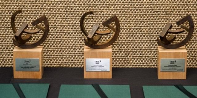Premios Fundacion Caser