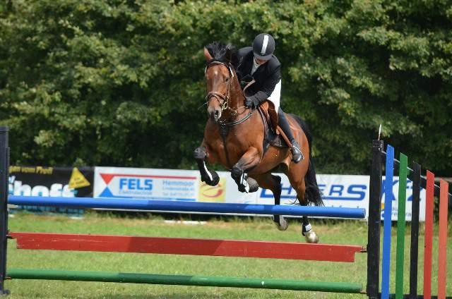 Un caballo realiza un salto