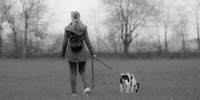 Perro de guía junto a su dueña