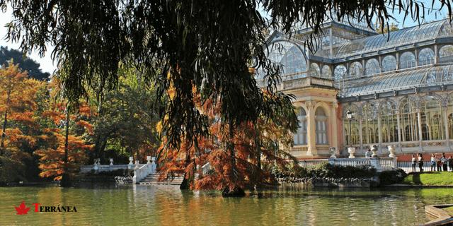 lago de el parque de El Retiro