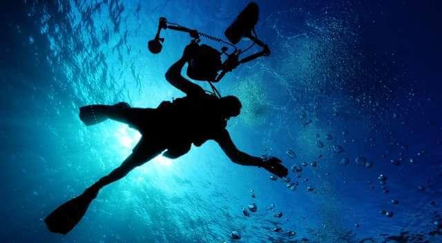 Instantánea captada mientras dos personas buceaban en el fondo del mar.