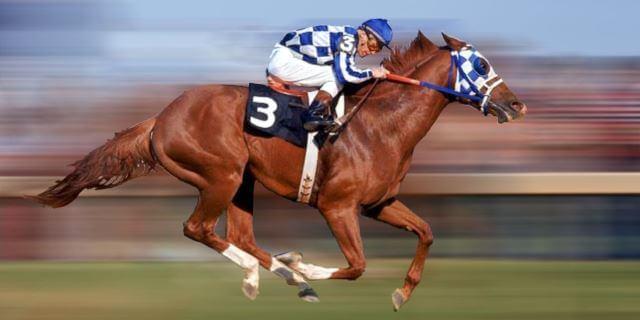 cómo se llama el caballo más rápido del mundo
