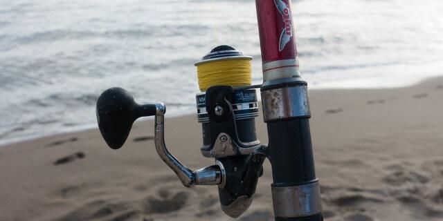 Carrete cerrado en caña de pescar.