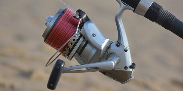 El sedal que sale del carrete se denomina línea para pescar.