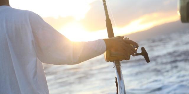 La pesca al curricán es una de las modalidades principales de pesca.