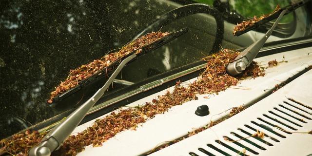 Limpiaparabrisas de un coche aparcado en la calle.