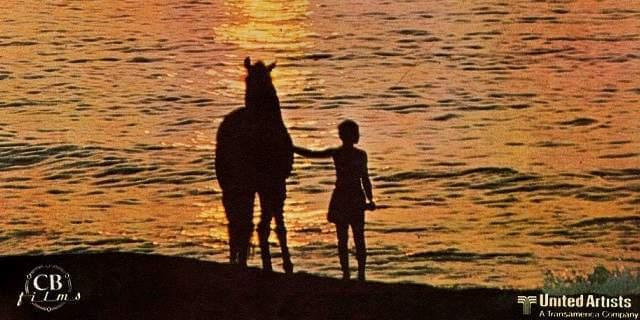 Una de las películas de caballos conocidas en todo el mundo.