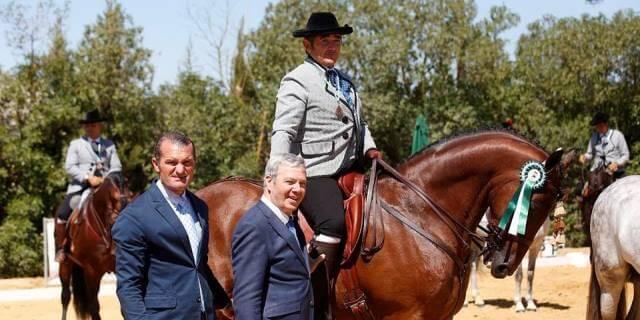 Campeonato de Andalucía.