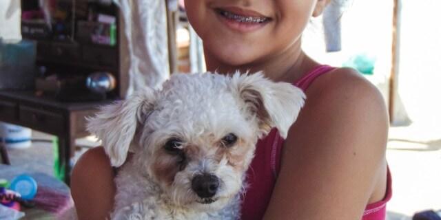 El Hospital Rey Juan Carlos permitirá visitas caninas
