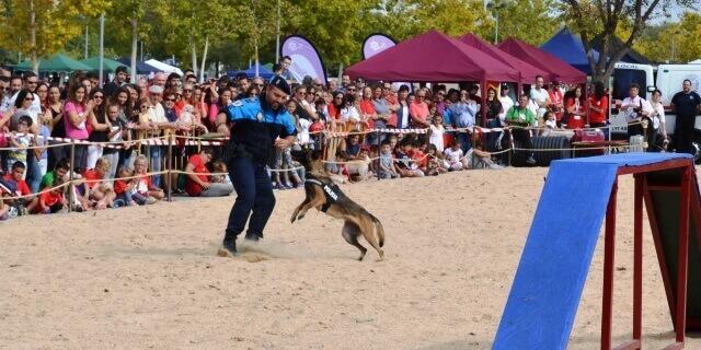 Exhibición Unidad Canina Policía Local de Coslada