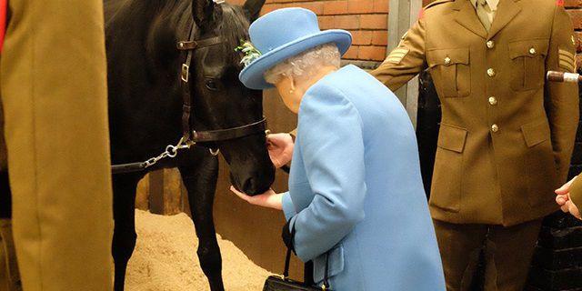 La Reina Isabel II visitando sus establos.