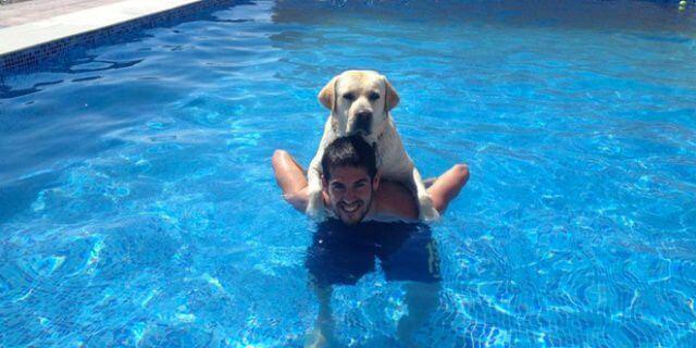 Isco en la psicina con su perro labrador (Messi).