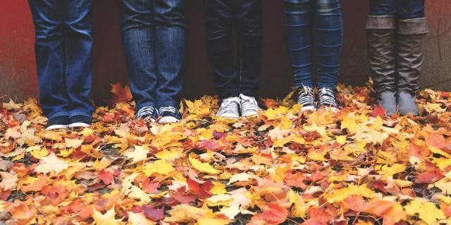 Las piernas de cuatro personas en una alfombra de hojas.