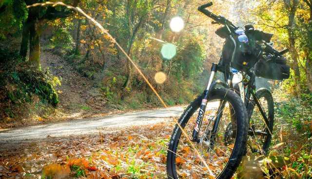 Bicicleta de montaña aparcada en un camino.
