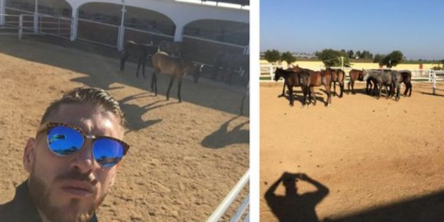Sergio Ramos con sus caballos.