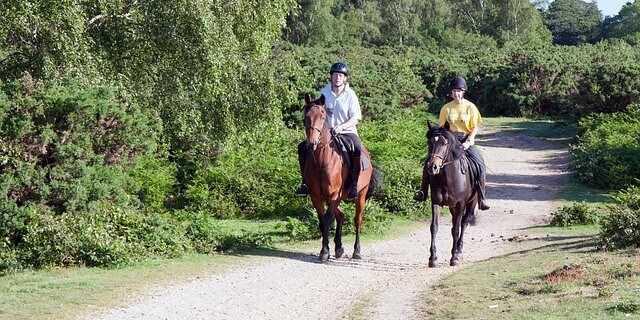 Montar a caballo en Madrid