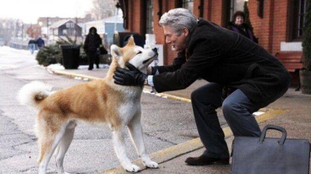 Imagen de la película Siempre a tu lado, con Richard Gere y el perro que interpreta a Hachiko.