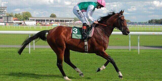 El famoso caballo Frankel
