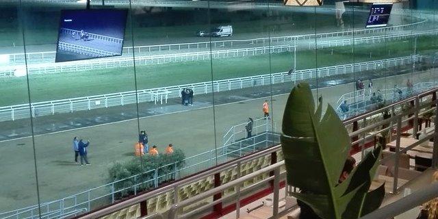 Gran Hipódromo de Andalucía (GHA)